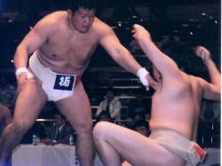 第88回東日本学生相撲選手権大会個人戦②