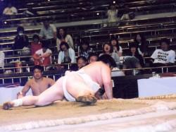 第88回東日本学生相撲選手権大会個人戦③