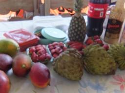 ブラジル連合会ピクニックに参加して④