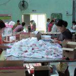作業をするミャンマー人
