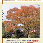 茗荷谷たより秋季号(第504号)表紙